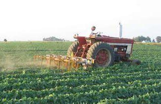 Farming - tractor