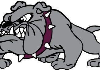 LHS mascot-Bulldog